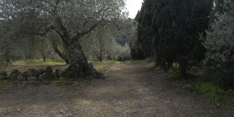 170206-metroquadroalghero-20