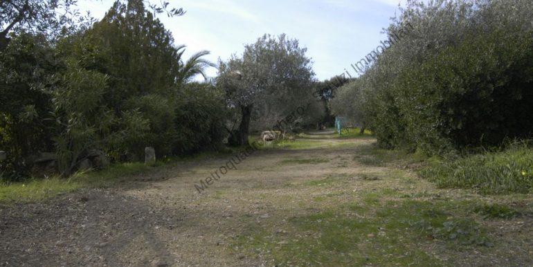170206-metroquadroalghero-28